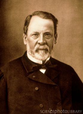 Portrait of the French chemist Louis Pasteur
