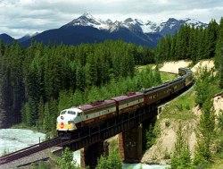 train7