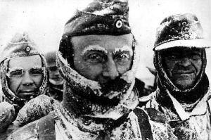 Nazis congelados