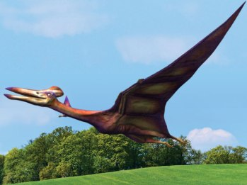 Quetzalcoatlus al vuelo