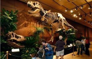 T-Rex en Las Vegas