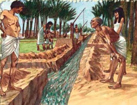 Primeros agricultores